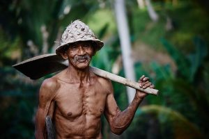 Indonesia Minimum Wage