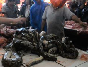 Indonesia extreme market