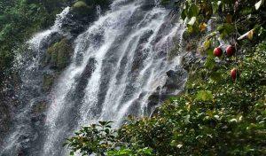 The Beautiful Waterfall