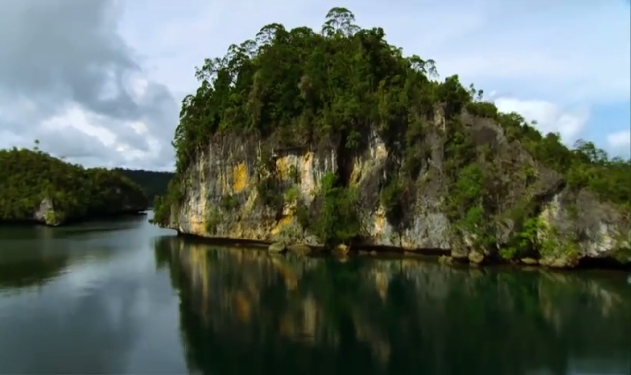 This Video Showing How Beautiful Raja Ampat, Papua, Indonesia Is