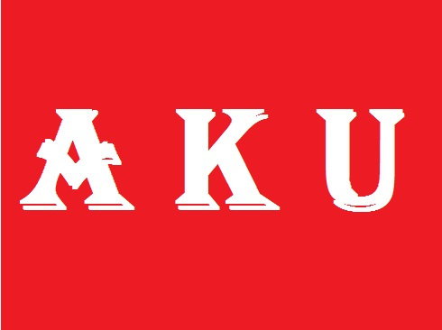 WHAT DOES AKU MEANS - INDONESIAN PRONOUNS #2