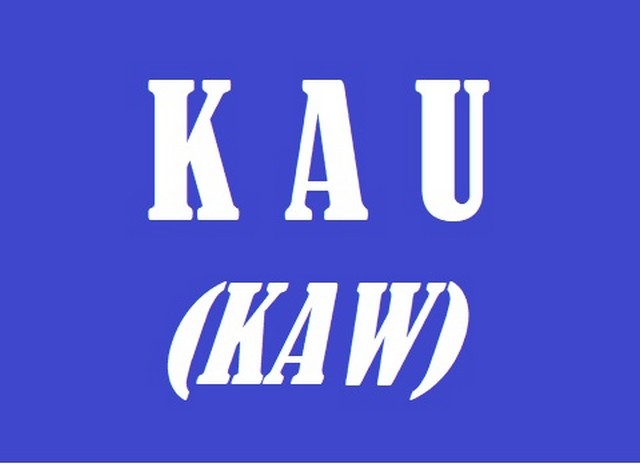 what does kau mean - indonesian pronoun 01